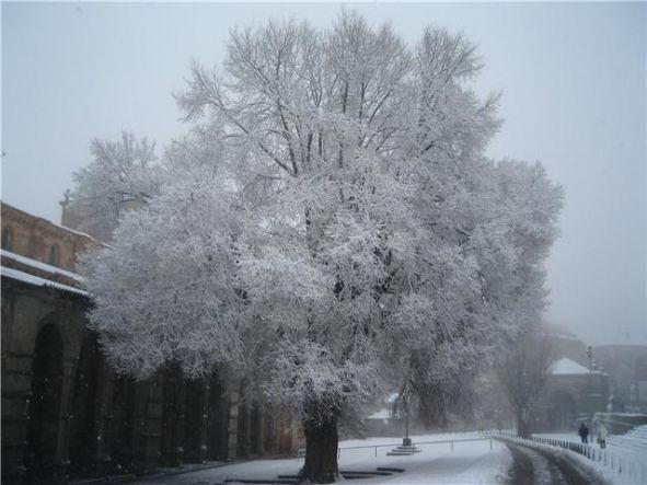 la ultima nevada