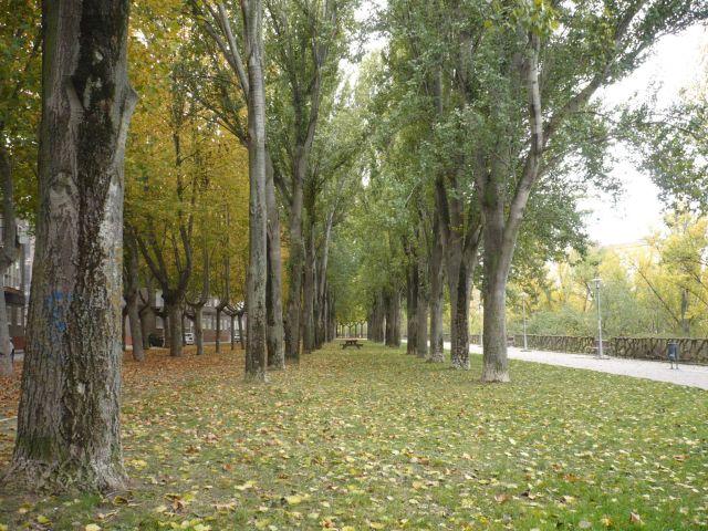 Paseo del Cid -Valladolid