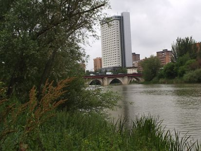 Paseando por Valladolid ( Puentes )