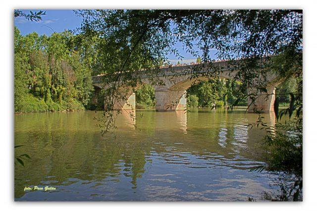 Puente de Tudela de Duero
